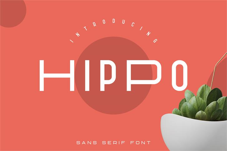 Hippo Font design graphic