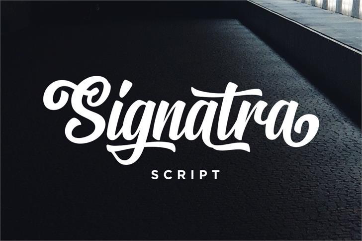 Signatra DEMO font by Twicolabs