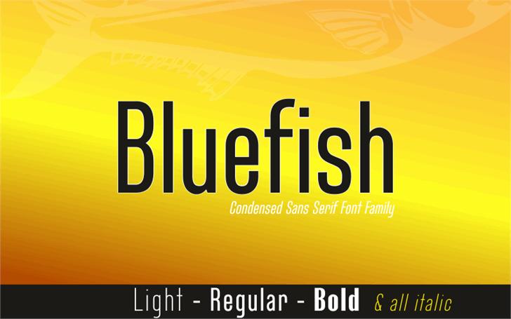 Bluefish Demo Font design poster