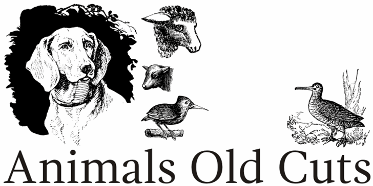 Animals Old Cuts Font text book