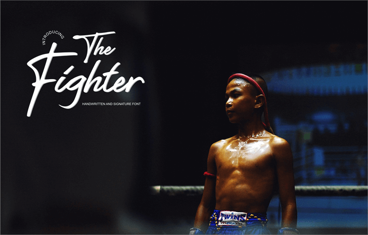 The Fighter Font poster