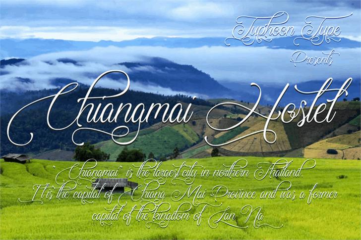 Chiangmai Hostel Font grass text