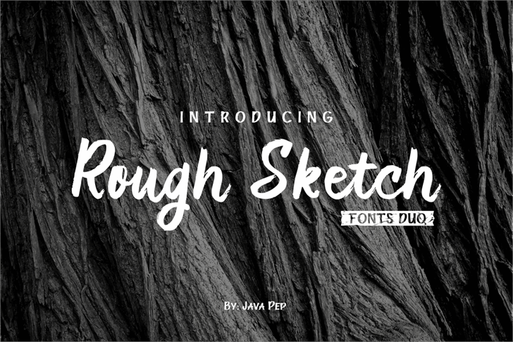 RoughDuo Font poster