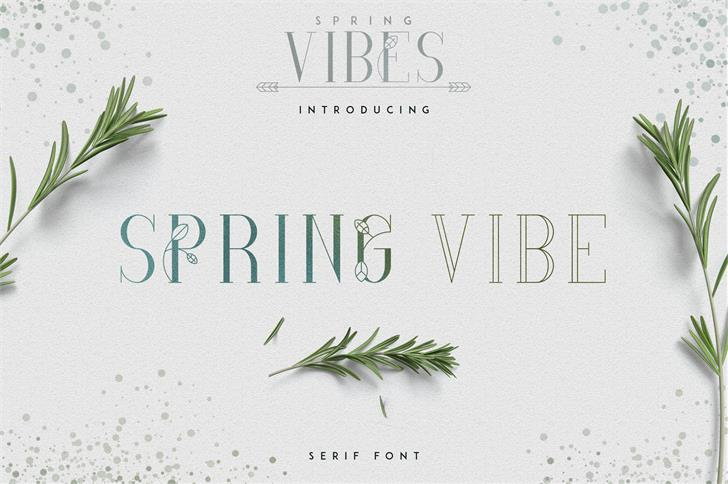 [SPRING VIBES] SPRINGVIBE SERIF FONT design typography