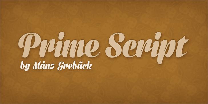 Prime Script PERSONAL USE ONLY Font screenshot design