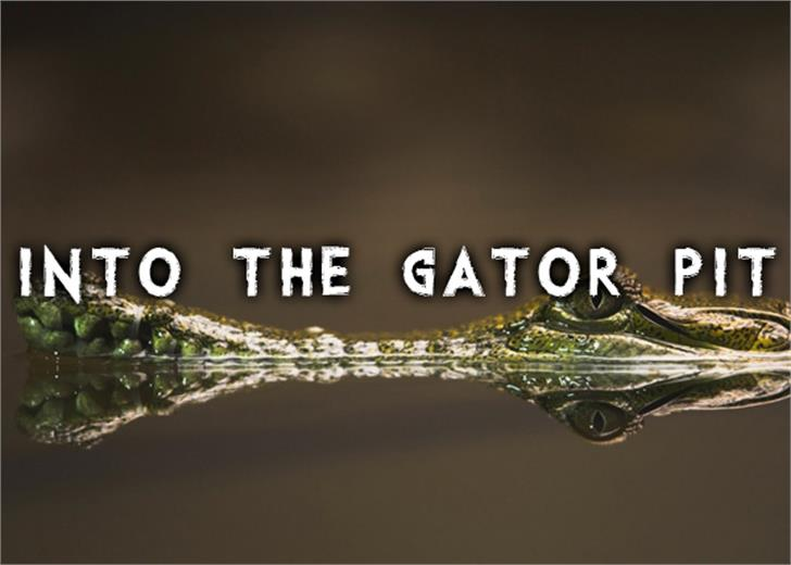Into the Gator Pit Font poster