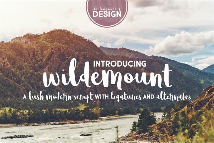 Wildemount font by Brittney Murphy Design