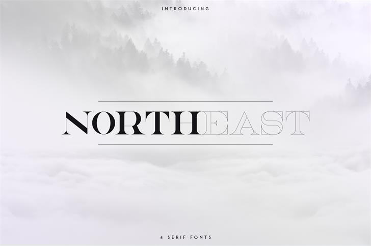 NorthEast font by vladfedotovv