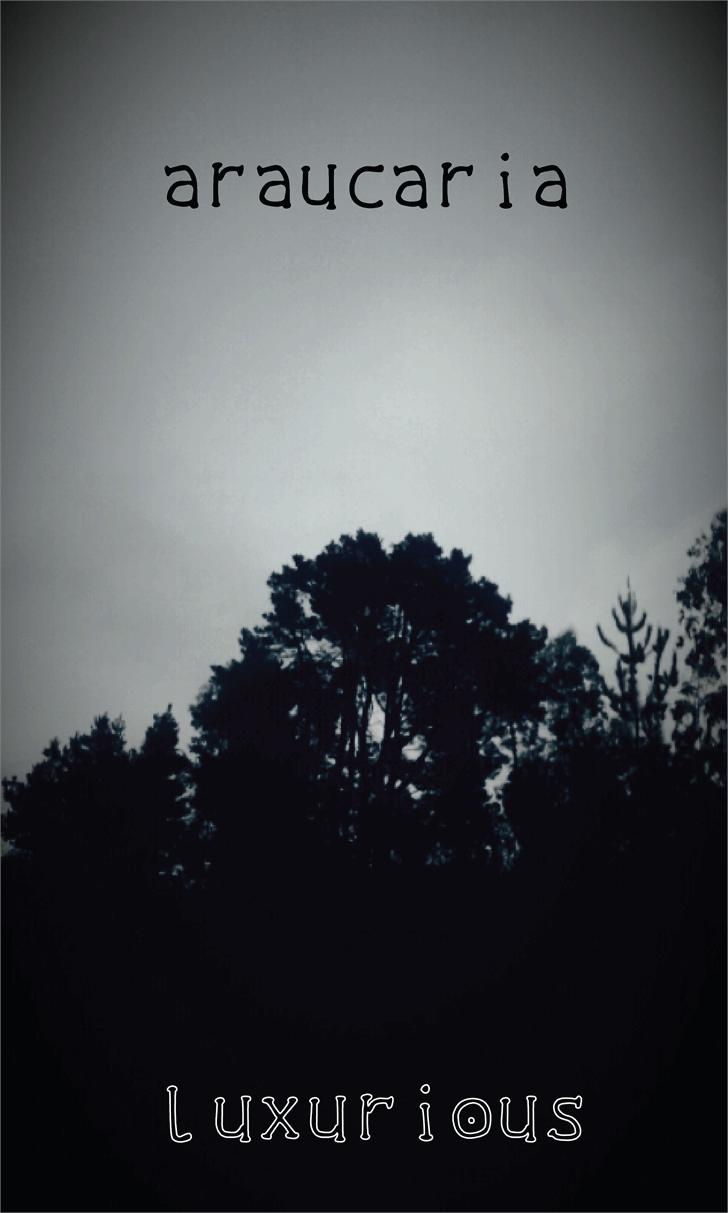 the luxurious dark Font tree sky