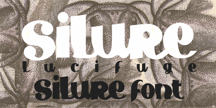 Silure Font typography poster
