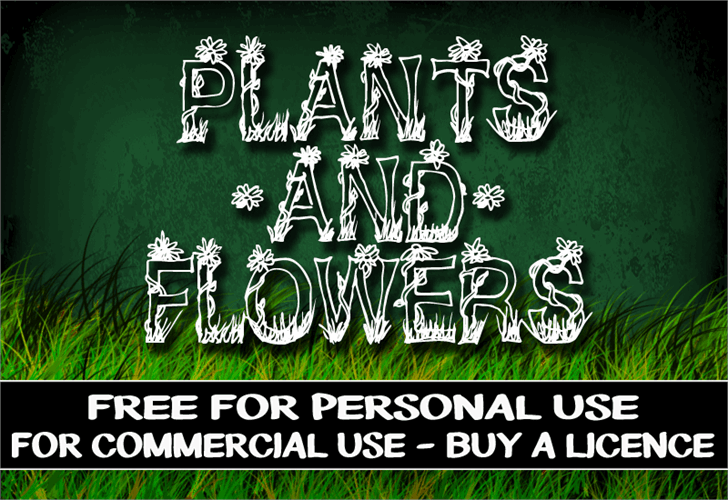 CF Plants and Flowers Font design typography