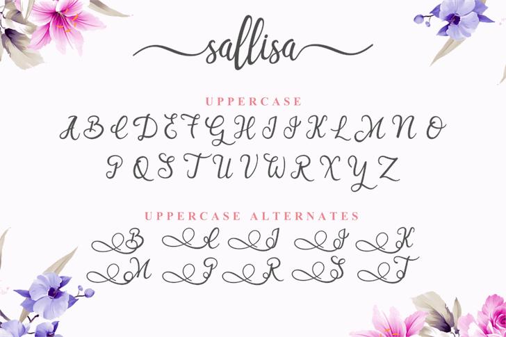 Sallisa Font handwriting text