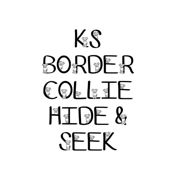 Ks Border Collie Hide N Seek Font design