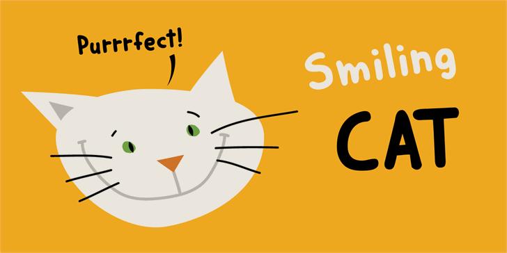 DK Smiling Cat Font design cartoon