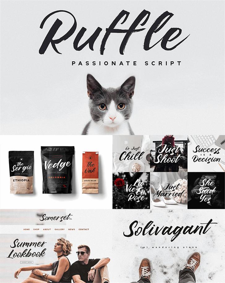 Ruffle Script DEMO Font text cat