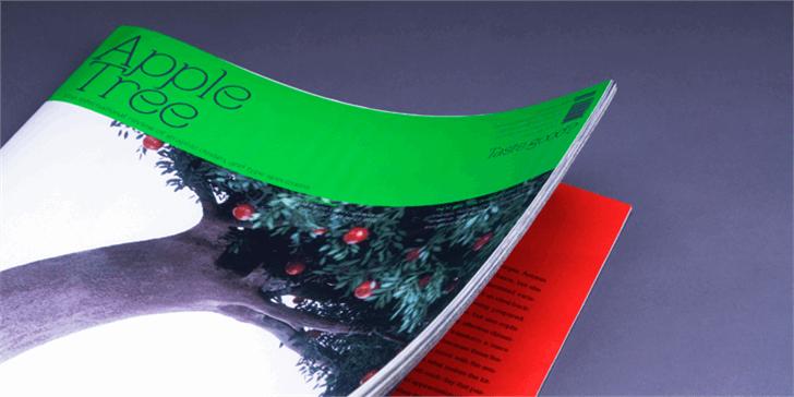 Apple Tree Font indoor book