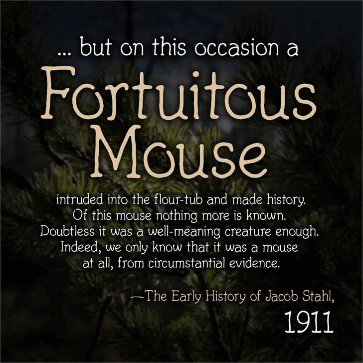 Fortuitous Mouse Font poster
