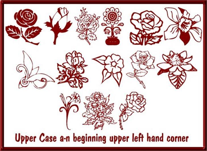 Floral Design Font cartoon drawing