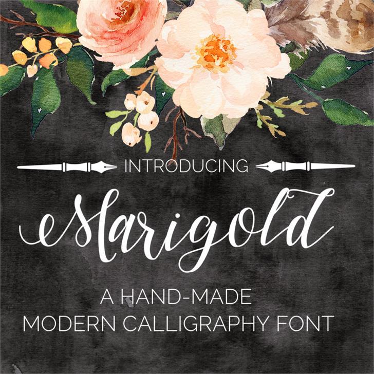 Marigold Font text book