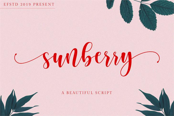 Sunberry Font poster