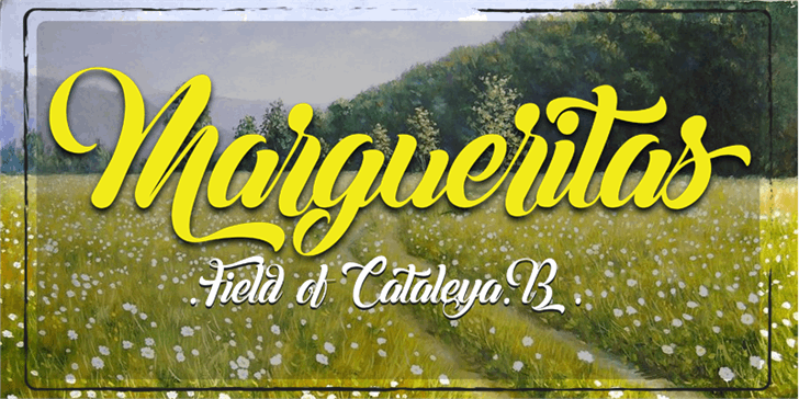Margueritas Font text sign