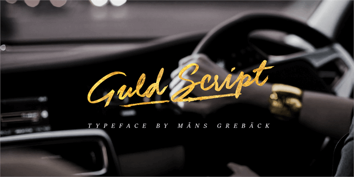 Guld Script PERSONAL USE ONLY Font indoor car