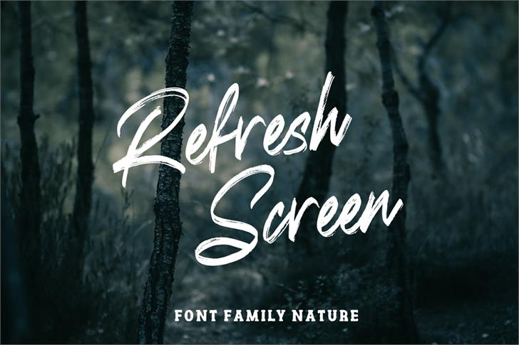 Refresh Screen Font poster