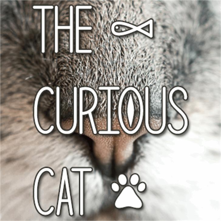 The Curious Cat Font design poster