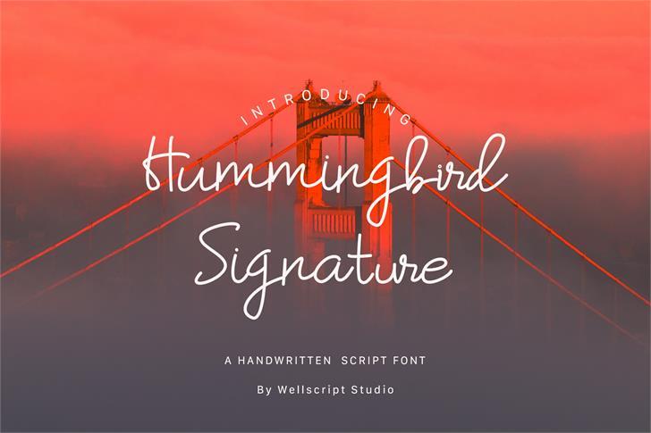 Hummingbird-Regular Font poster