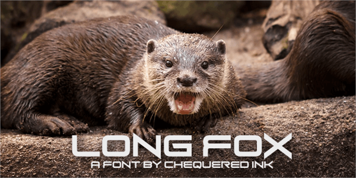 Long Fox Font ground animal