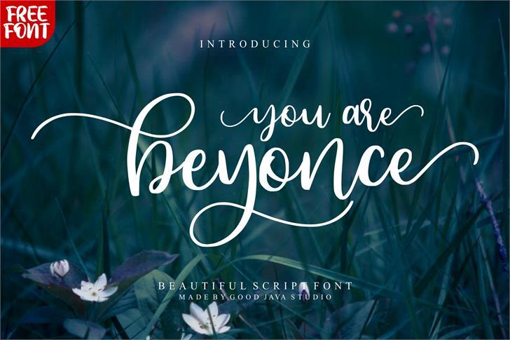 Beyonce Font text