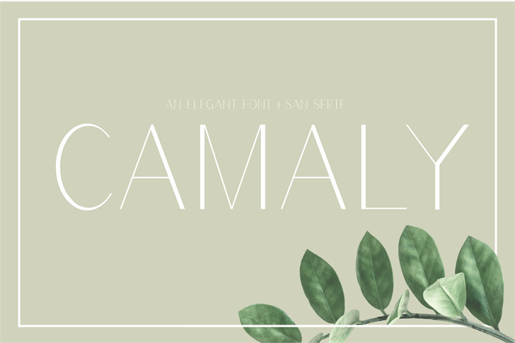 Camaly Font poster