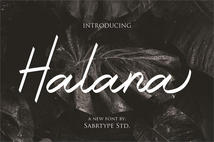 Halana Font poster