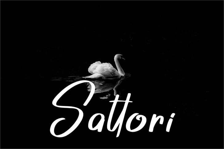 Sattori Font bird book