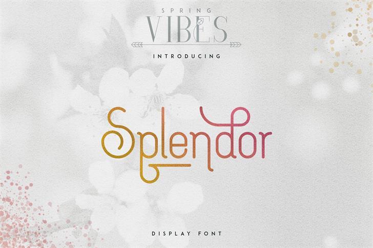 [SPRING VIBES] SPLENDOR FONT design text