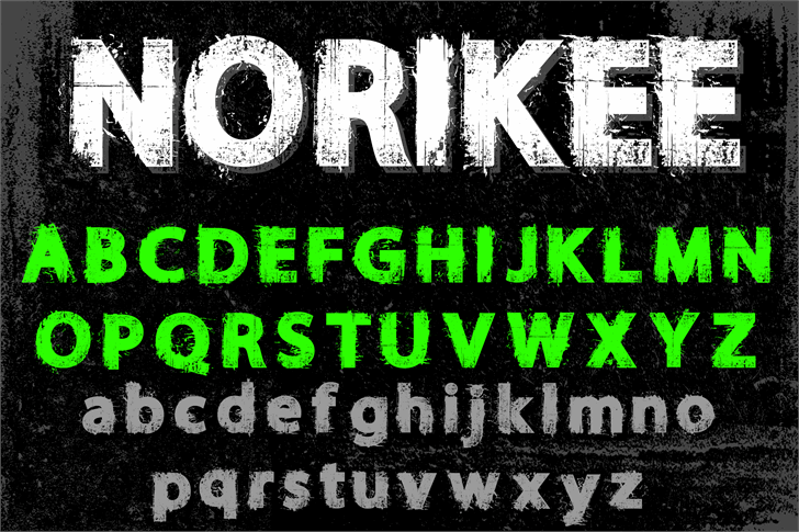NORIKEE DEMO Font poster text