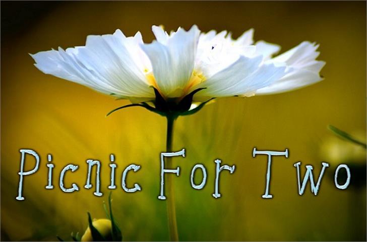 Picnicfortwo Font flower flora