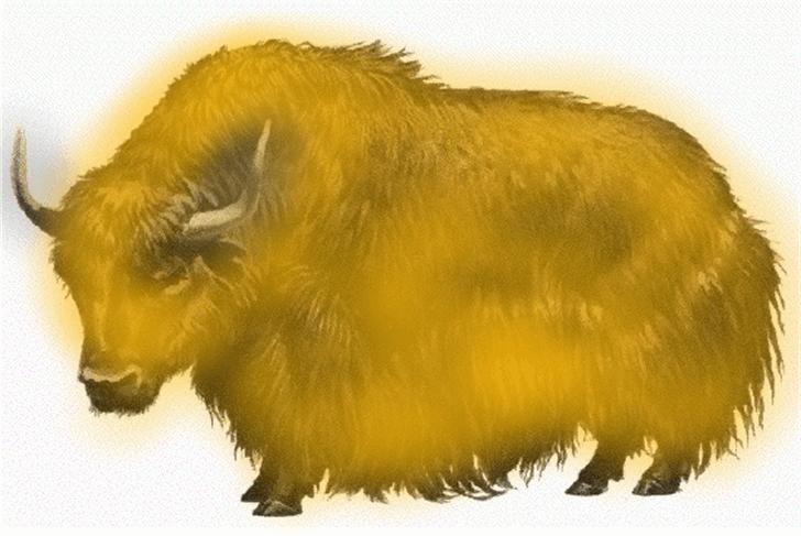 Yellow Yaks Yelp and Yodel Font animal mammal