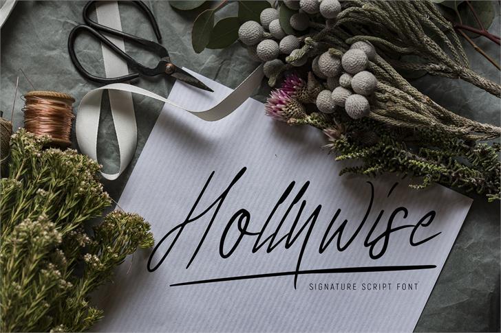 Hollywise ligature Font poster