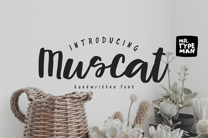 Muscat Font design typography