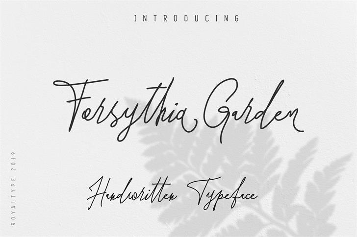 Forsythia Garden Font nintendo