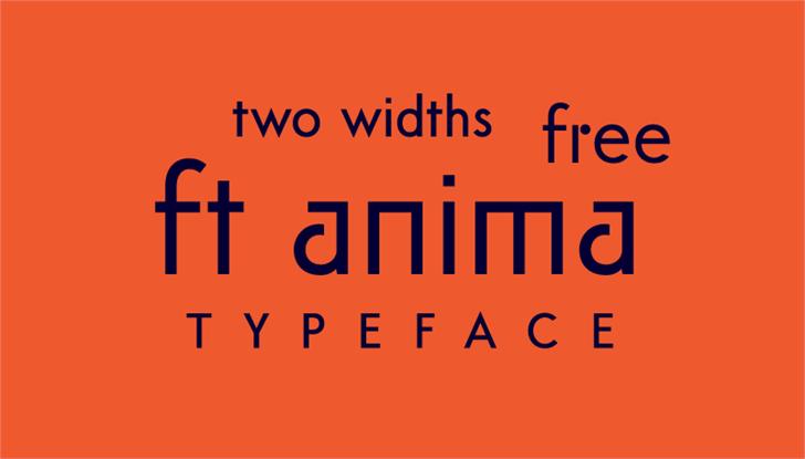 ft anima font by Igor Kosinsky