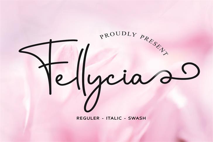Fellycia Font poster