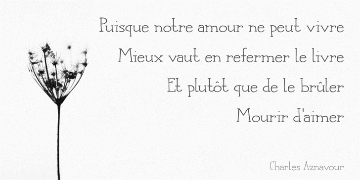 DK Languedoc Font handwriting typography