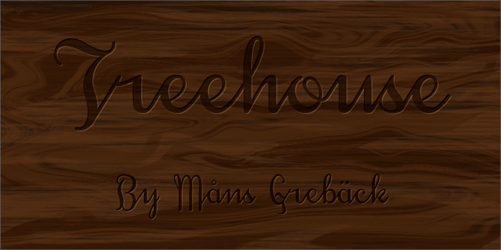 Treehouse DEMO Font handwriting outdoor