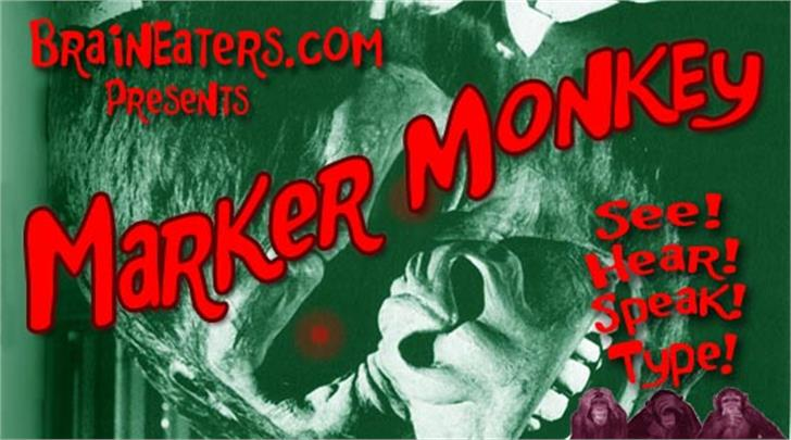 Marker Monkey FW Font poster book