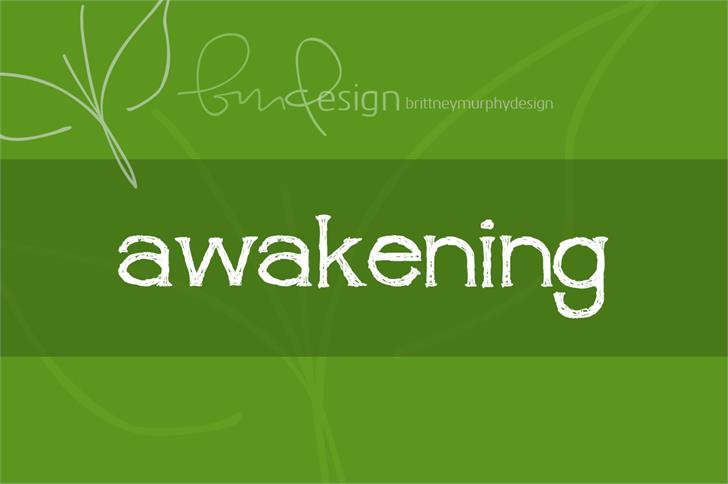 awakening Font screenshot design