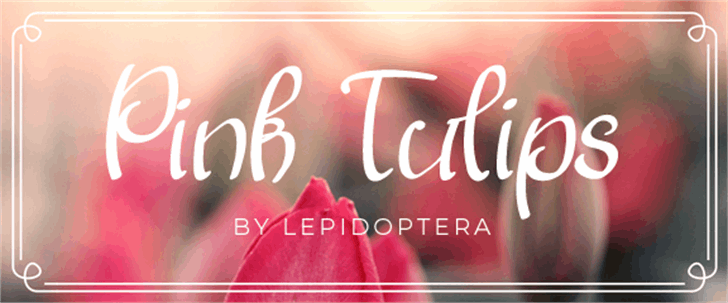 Pink Tulips 2 Font design text