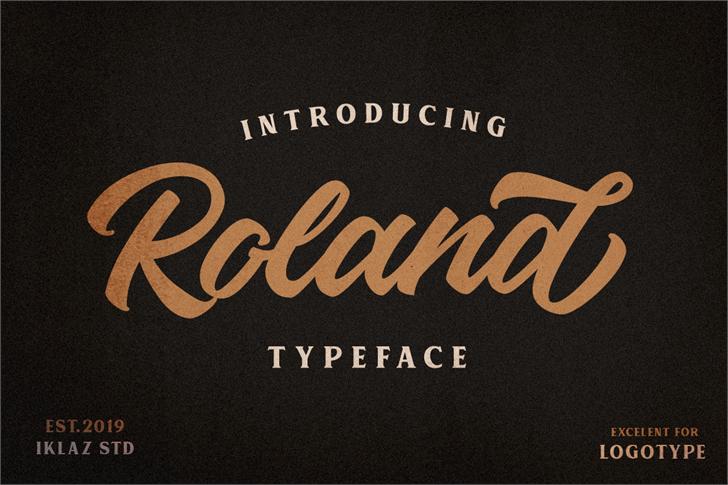 Roland Font design text