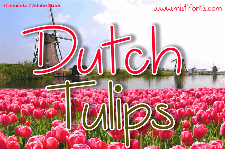 Dutch Tulips Demo Font design graphic